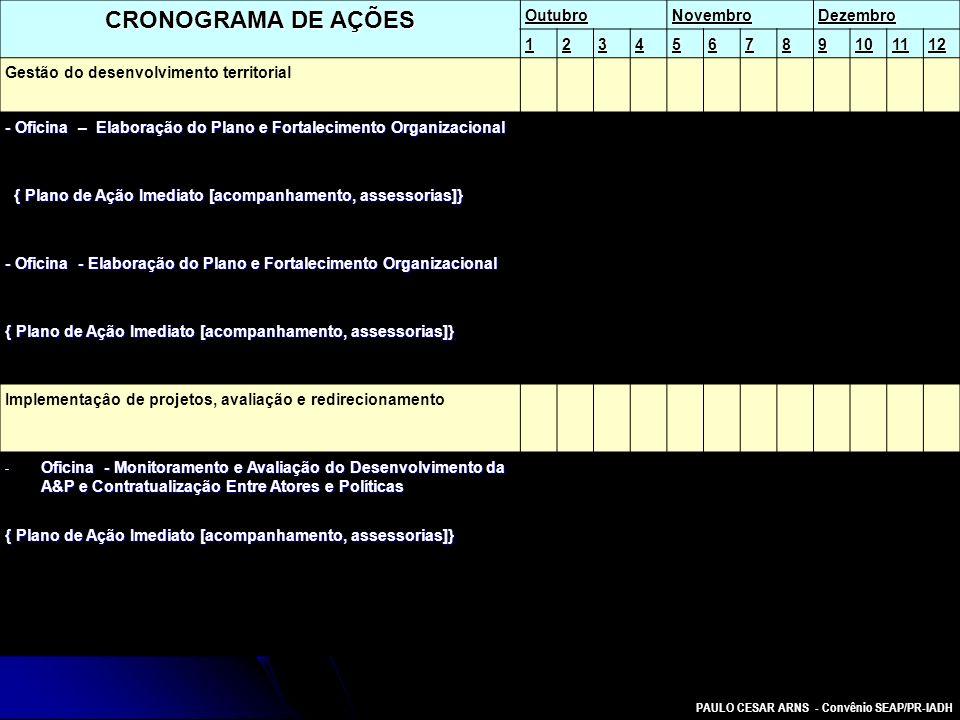 PAULO CESAR ARNS - Convênio SEAP/PR-IADH CRONOGRAMA DE AÇÕES OutubroNovembroDezembro 123456789101112 Gestão do desenvolvimento territorial - Oficina –