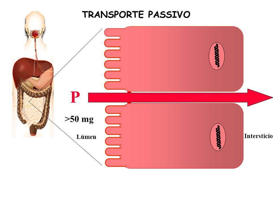 Ca Lúmen Interstício P TRANSPORTE PASSIVO >50 mg