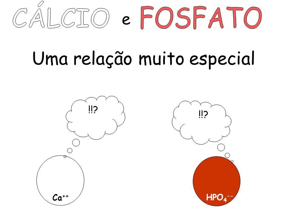 Uma relação muito especial e Ca ++ HPO 4 -- !!?