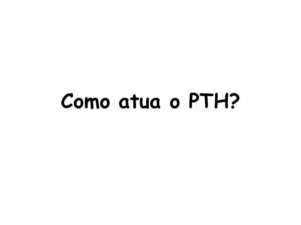 Como atua o PTH?