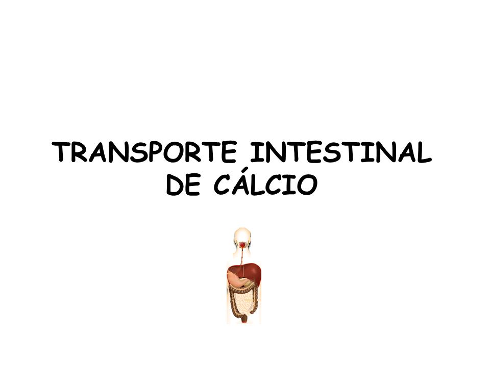 TRANSPORTE INTESTINAL DE CÁLCIO