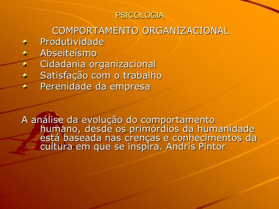 PSICOLOGIA COMPORTAMENTO ORGANIZACIONAL ProdutividadeAbseiteísmo Cidadania organizacional Satisfação com o trabalho Perenidade da empresa A análise da