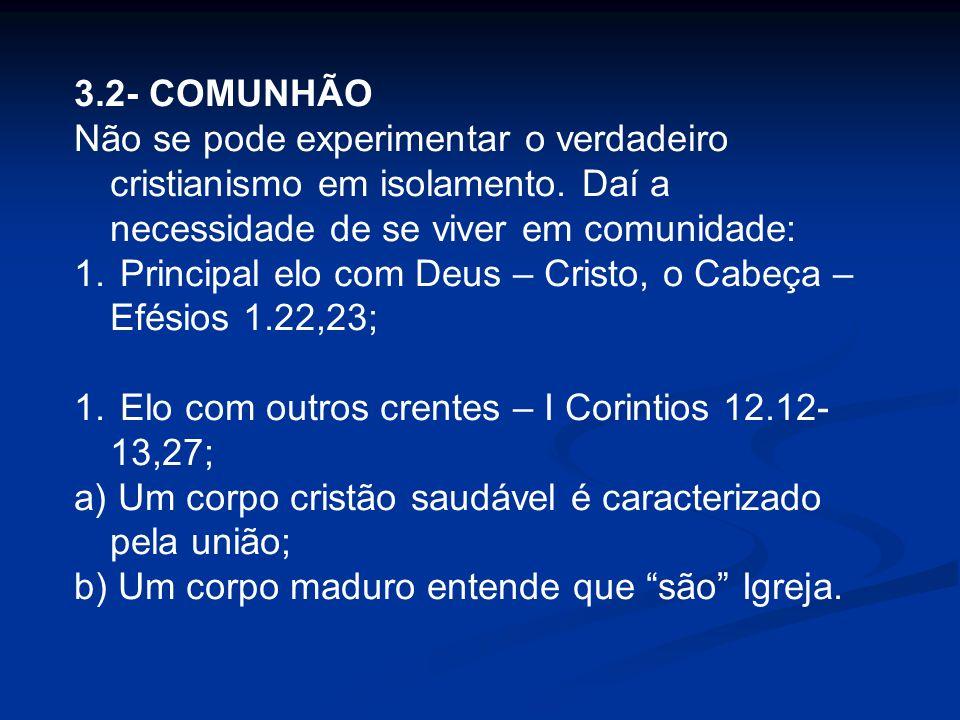 3.2- COMUNHÃO Não se pode experimentar o verdadeiro cristianismo em isolamento. Daí a necessidade de se viver em comunidade: 1. Principal elo com Deus