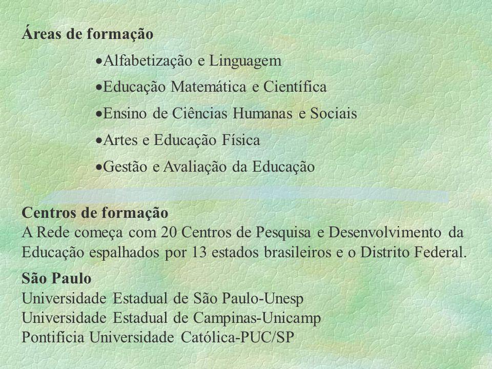 Áreas de formação Alfabetização e Linguagem Educação Matemática e Científica Ensino de Ciências Humanas e Sociais Artes e Educação Física Gestão e Ava