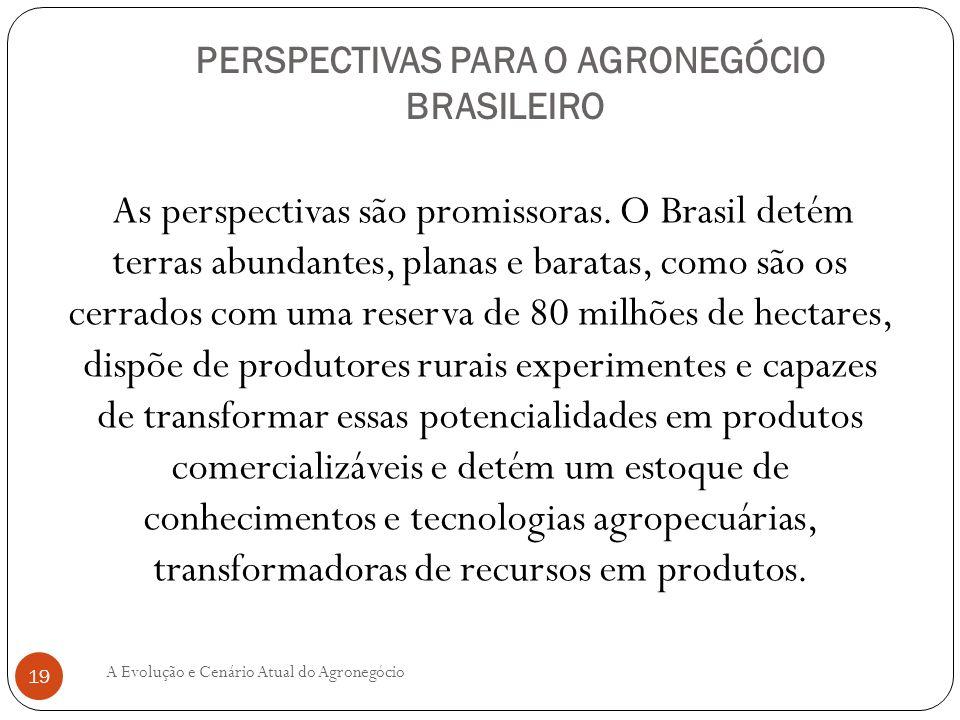 PERSPECTIVAS PARA O AGRONEGÓCIO BRASILEIRO As perspectivas são promissoras. O Brasil detém terras abundantes, planas e baratas, como são os cerrados c