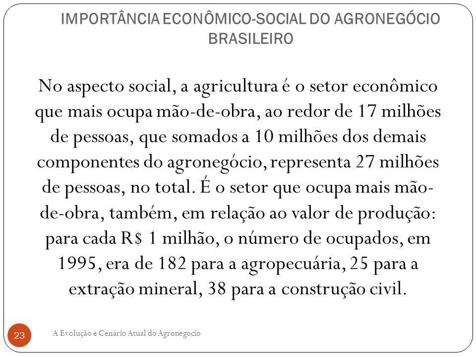 IMPORTÂNCIA ECONÔMICO-SOCIAL DO AGRONEGÓCIO BRASILEIRO No aspecto social, a agricultura é o setor econômico que mais ocupa mão-de-obra, ao redor de 17