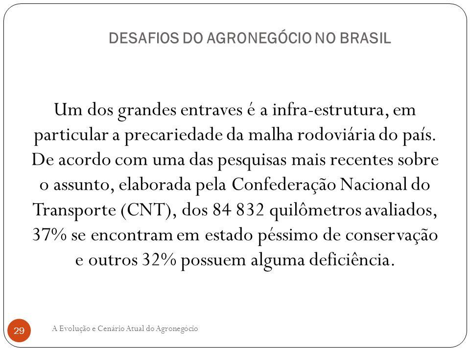DESAFIOS DO AGRONEGÓCIO NO BRASIL Um dos grandes entraves é a infra-estrutura, em particular a precariedade da malha rodoviária do país. De acordo com