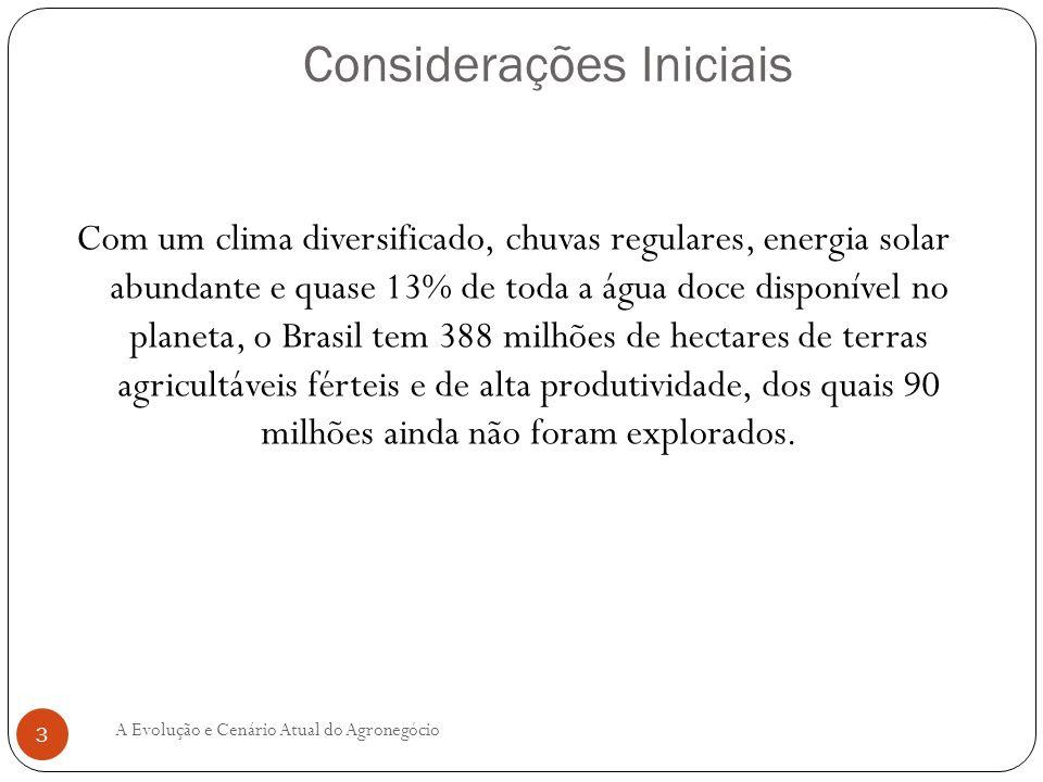 IMPORTÂNCIA ECONÔMICO-SOCIAL DO AGRONEGÓCIO BRASILEIRO No contexto da recente crise cambial, o agronegócio tem sido um fator que minimizou os desequilíbrios das contas externas do Brasil, pois a agricultura contribuiu decisivamente para as exportações com saldo comercial setorial positivo da ordem de US$ 40,18 bilhões de dólares em 2006 e de 49,7 bilhões em 2007, conforme o Quadro a seguir.