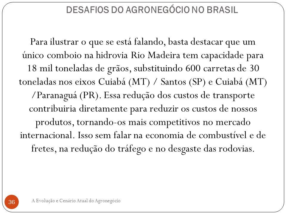 DESAFIOS DO AGRONEGÓCIO NO BRASIL Para ilustrar o que se está falando, basta destacar que um único comboio na hidrovia Rio Madeira tem capacidade para