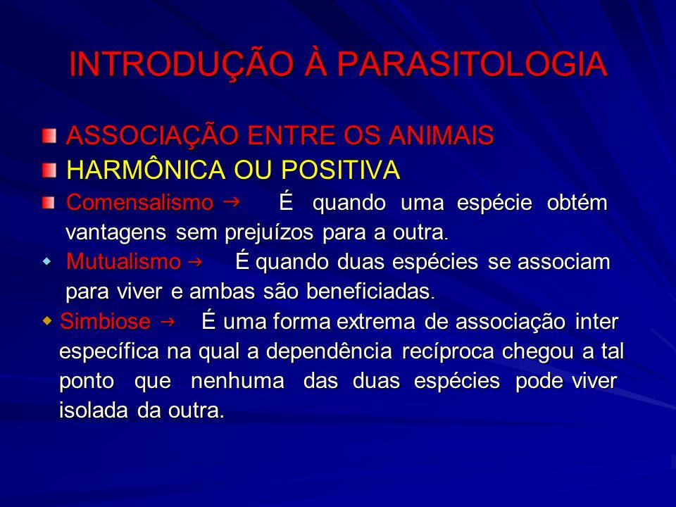 INTRODUÇÃO À PARASITOLOGIA ASSOCIAÇÃO ENTRE OS ANIMAIS HARMÔNICA OU POSITIVA Comensalismo É quando uma espécie obtém vantagens sem prejuízos para a ou