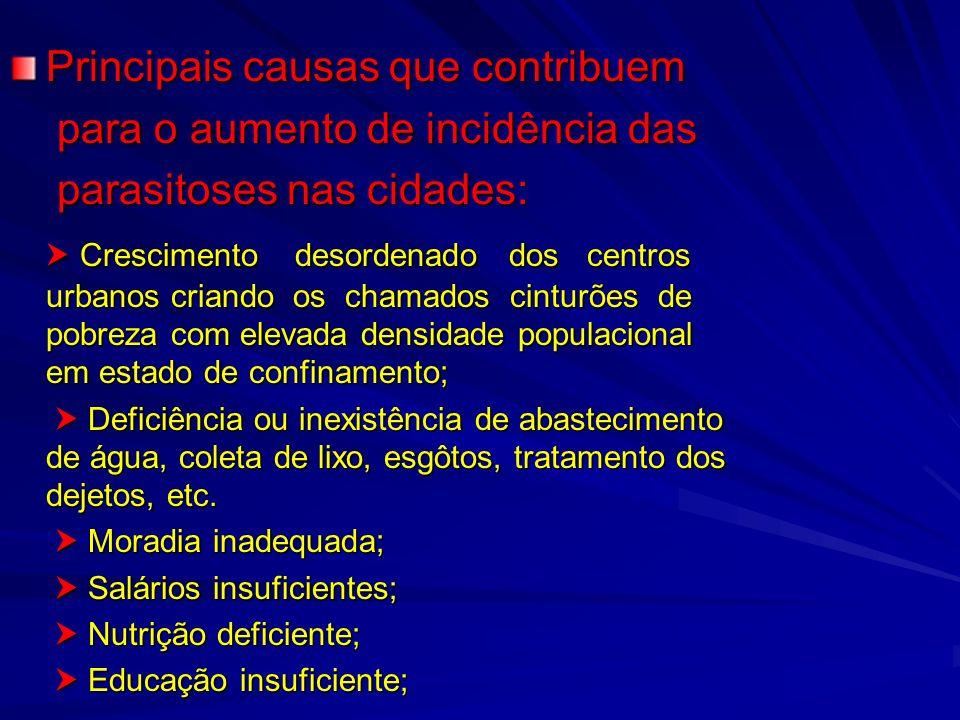 Principais causas que contribuem para o aumento de incidência das para o aumento de incidência das parasitoses nas cidades: parasitoses nas cidades: C