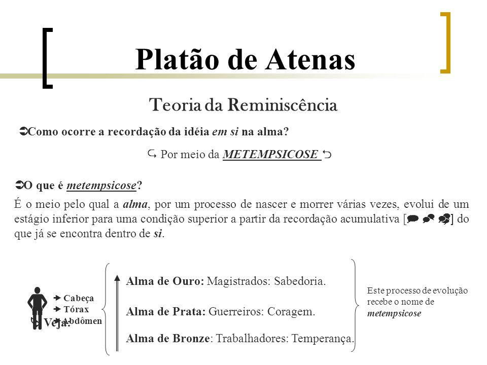 Platão de Atenas O que é metempsicose.