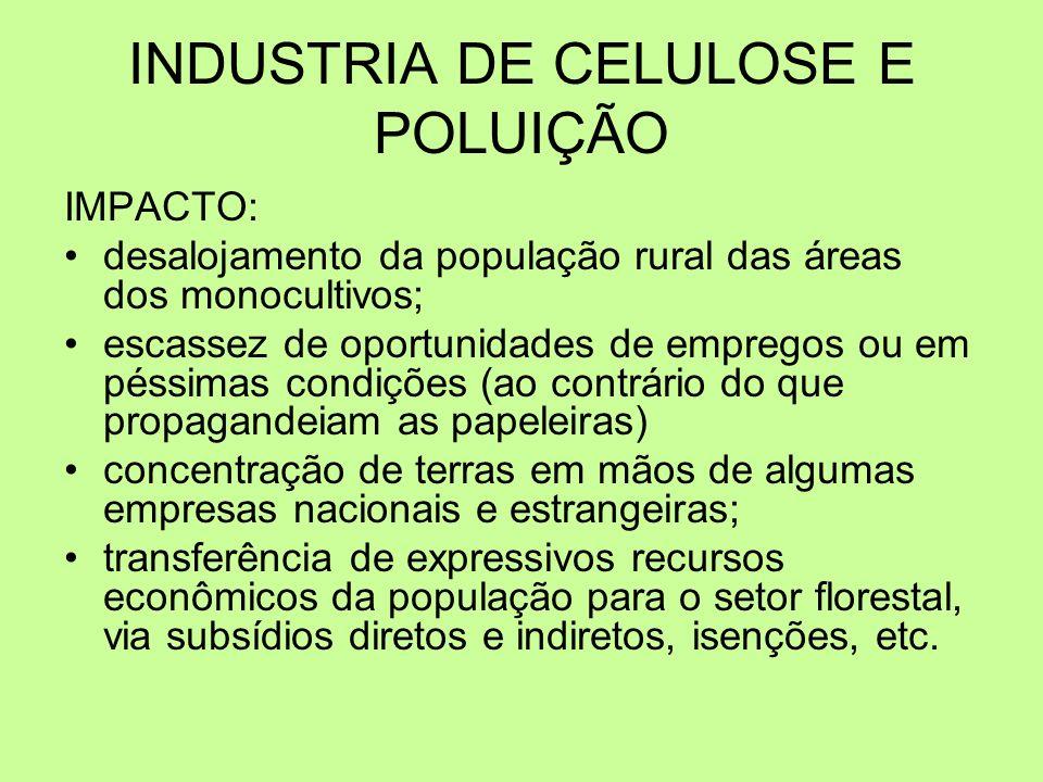 INDUSTRIA DE CELULOSE E POLUIÇÃO IMPACTO: desalojamento da população rural das áreas dos monocultivos; escassez de oportunidades de empregos ou em pés