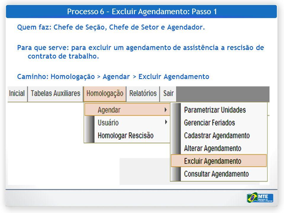 Processo 6 – Excluir Agendamento: Passo 1 Quem faz: Chefe de Seção, Chefe de Setor e Agendador. Para que serve: para excluir um agendamento de assistê