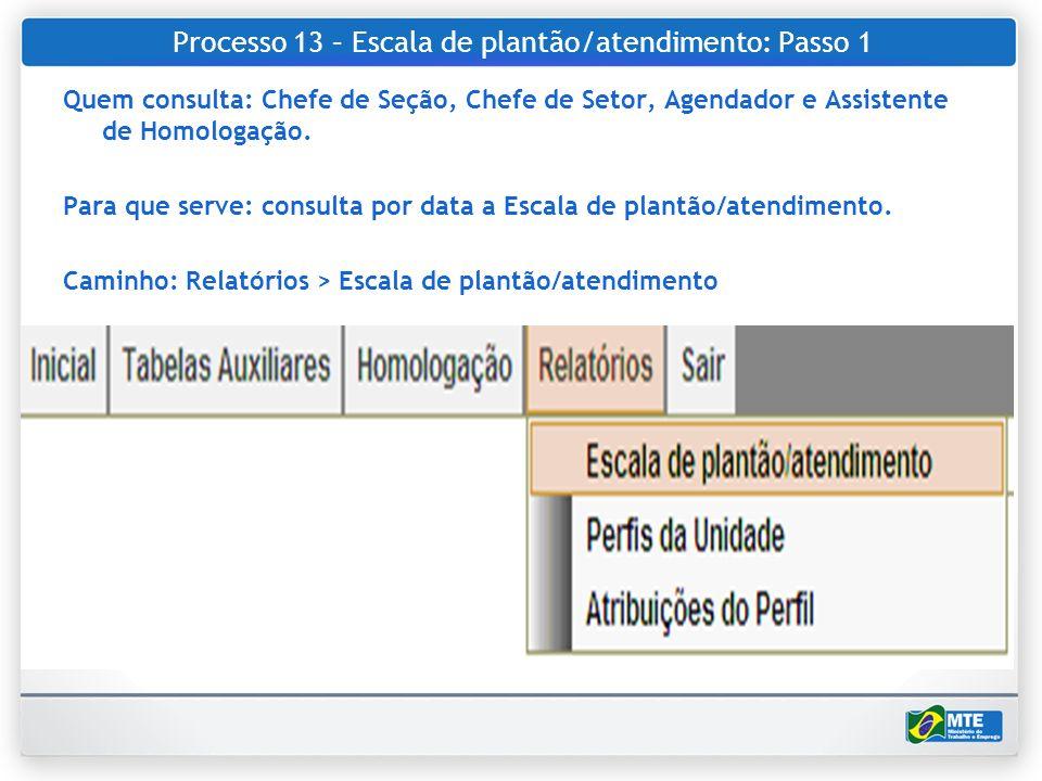 Processo 13 – Escala de plantão/atendimento: Passo 1 Quem consulta: Chefe de Seção, Chefe de Setor, Agendador e Assistente de Homologação. Para que se