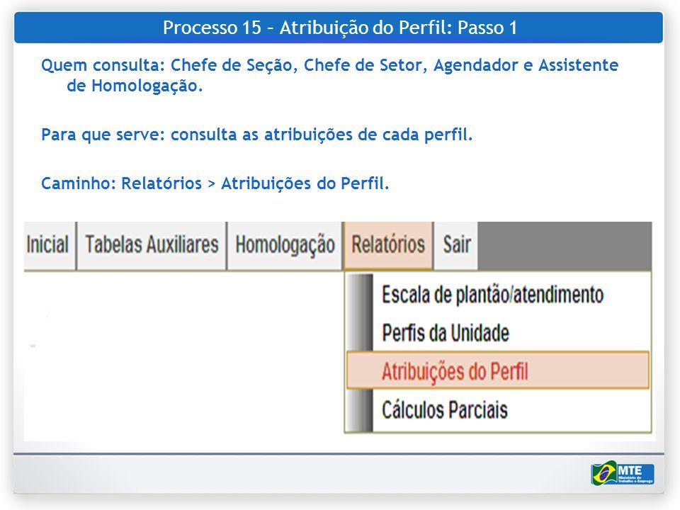 Processo 15 – Atribuição do Perfil: Passo 1 Quem consulta: Chefe de Seção, Chefe de Setor, Agendador e Assistente de Homologação. Para que serve: cons