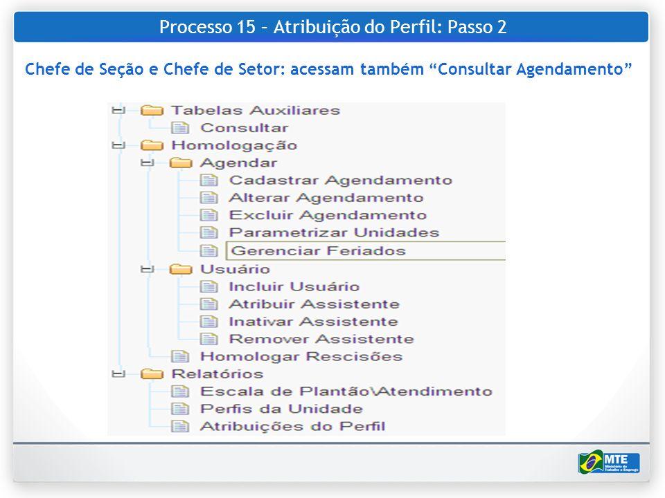 Processo 15 – Atribuição do Perfil: Passo 2 Chefe de Seção e Chefe de Setor: acessam também Consultar Agendamento