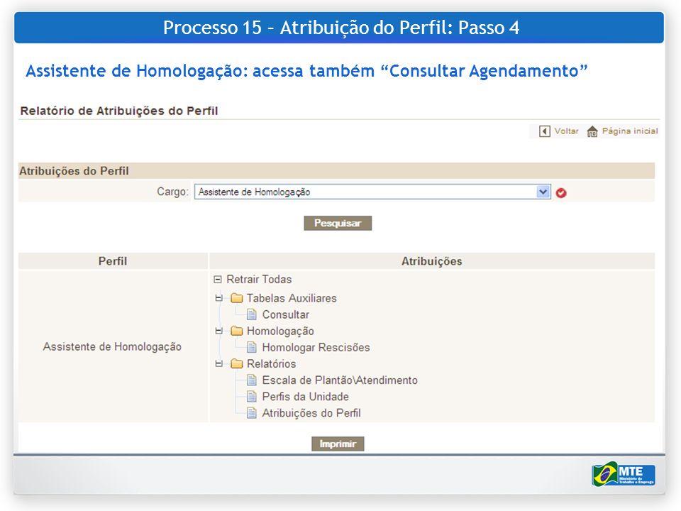 Processo 15 – Atribuição do Perfil: Passo 4 Assistente de Homologação: acessa também Consultar Agendamento