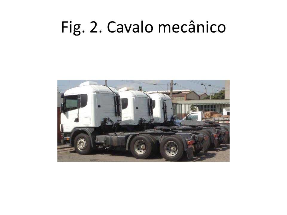 Fig. 2. Cavalo mecânico