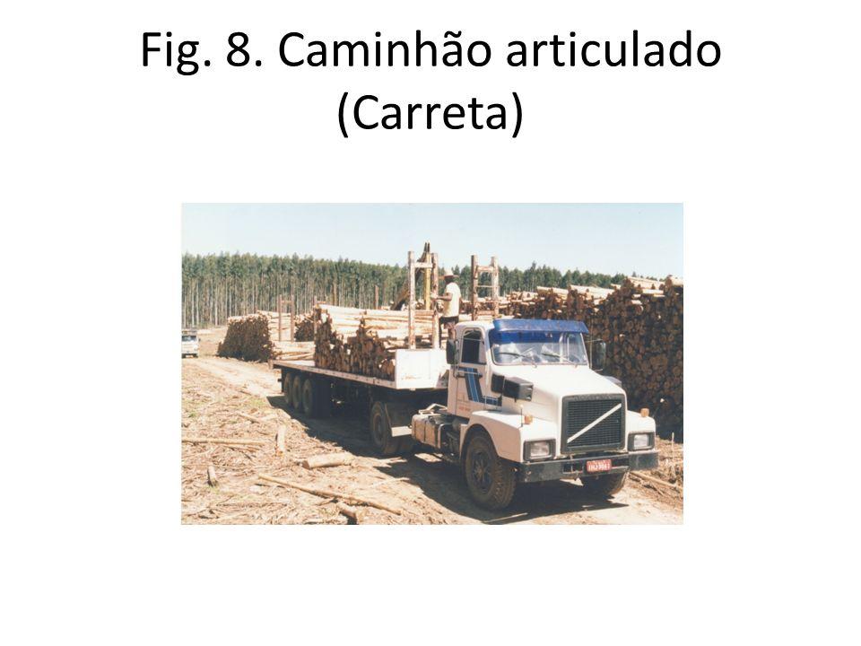 Fig. 8. Caminhão articulado (Carreta)