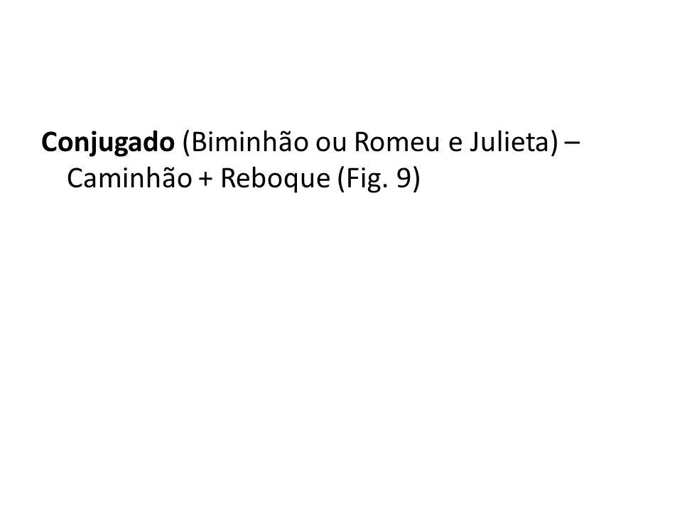 Conjugado (Biminhão ou Romeu e Julieta) – Caminhão + Reboque (Fig. 9)