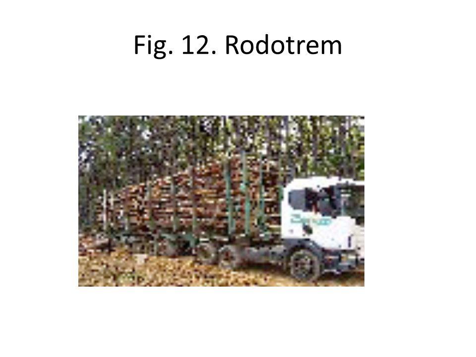 Fig. 12. Rodotrem