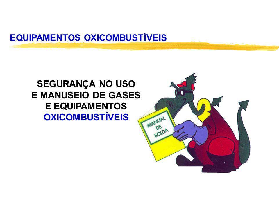EQUIPAMENTOS OXICOMBUSTÍVEIS SEGURANÇA NO USO E MANUSEIO DE GASES E EQUIPAMENTOS OXICOMBUSTÍVEIS