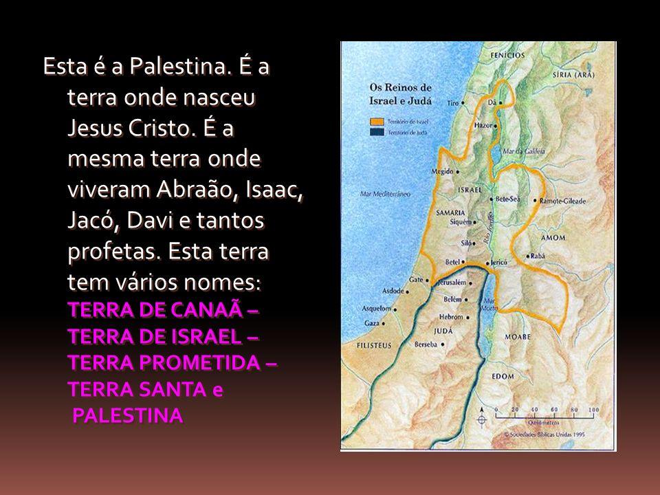 Esta é a Palestina. É a terra onde nasceu Jesus Cristo. É a mesma terra onde viveram Abraão, Isaac, Jacó, Davi e tantos profetas. Esta terra tem vário