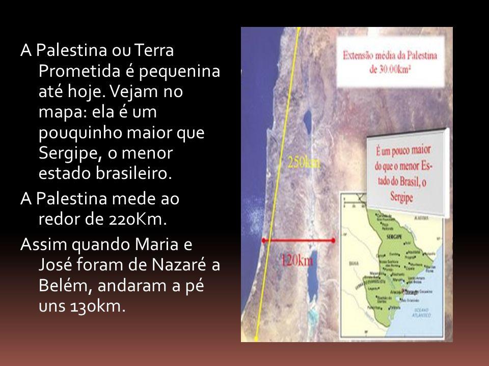 A Palestina ou Terra Prometida é pequenina até hoje. Vejam no mapa: ela é um pouquinho maior que Sergipe, o menor estado brasileiro. A Palestina mede