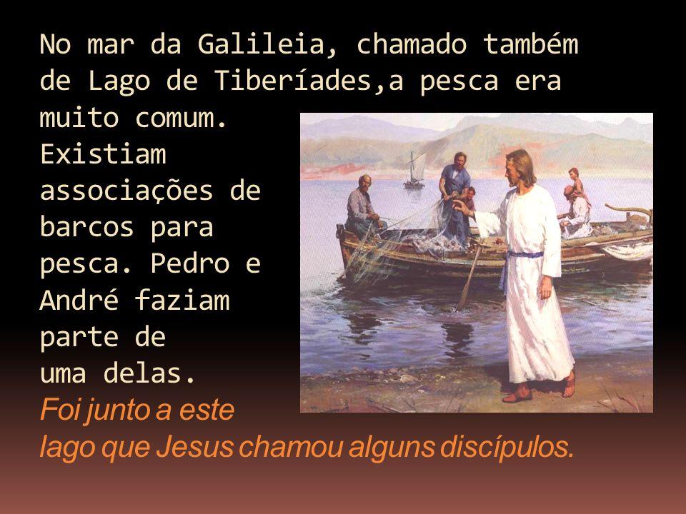 No mar da Galileia, chamado também de Lago de Tiberíades,a pesca era muito comum. Existiam associações de barcos para pesca. Pedro e André faziam part