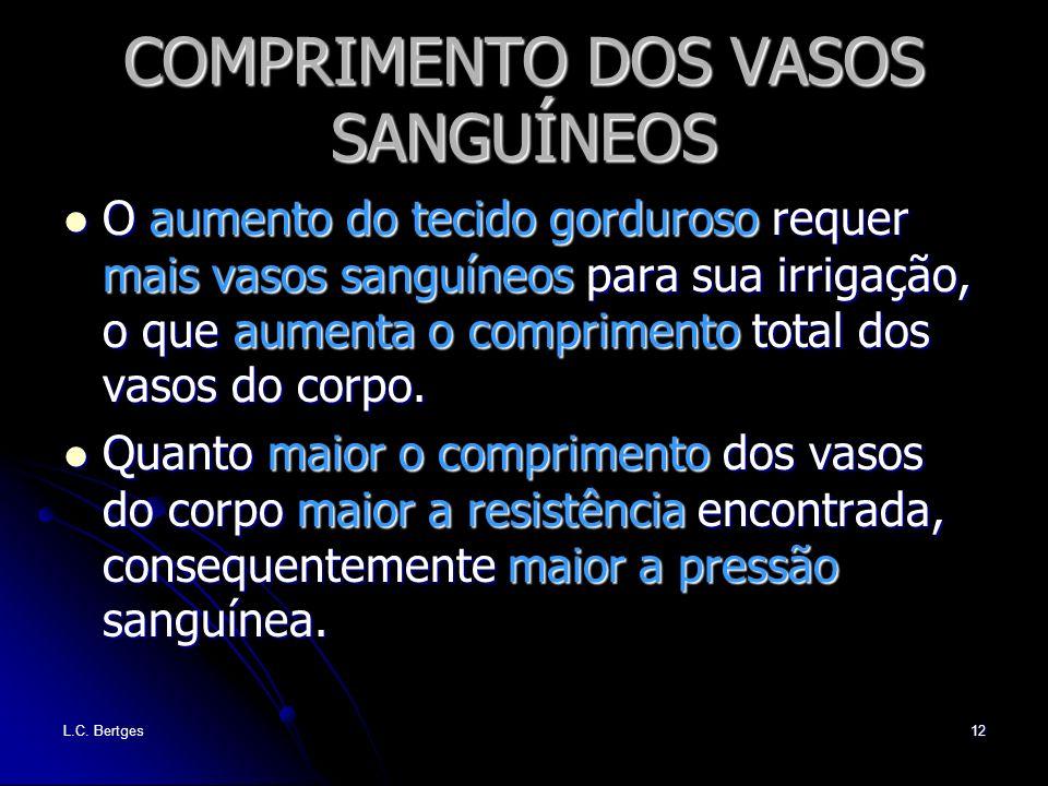 L.C. Bertges12 COMPRIMENTO DOS VASOS SANGUÍNEOS O aumento do tecido gorduroso requer mais vasos sanguíneos para sua irrigação, o que aumenta o comprim