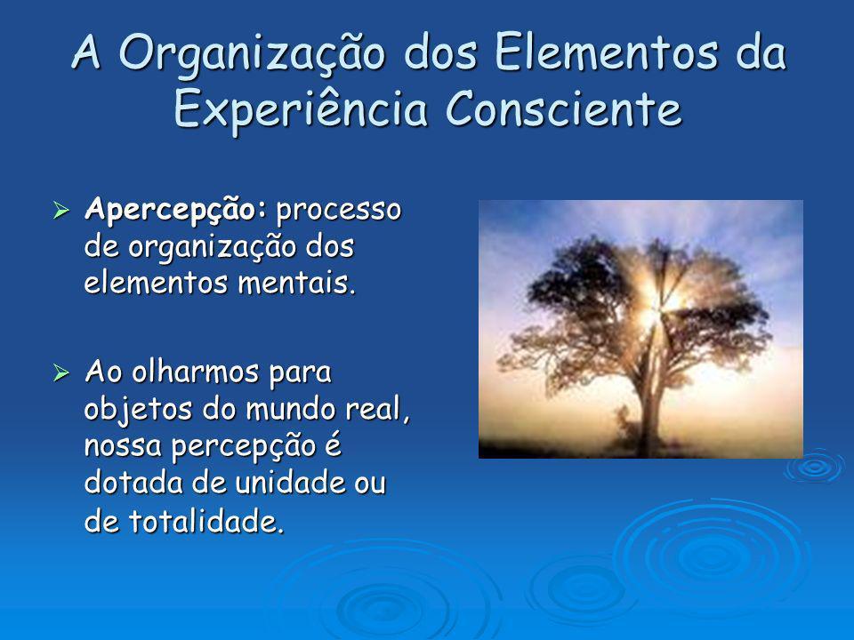A Organização dos Elementos da Experiência Consciente Apercepção: processo de organização dos elementos mentais. Apercepção: processo de organização d