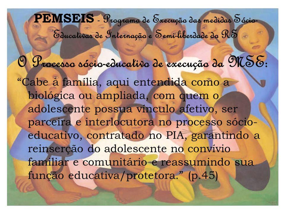 PEMSEIS - Programa de Execução das medidas Sócio- Educativas de Internação e Semi-liberdade do RS O Processo sócio-educativo de execução da MSE: Cabe