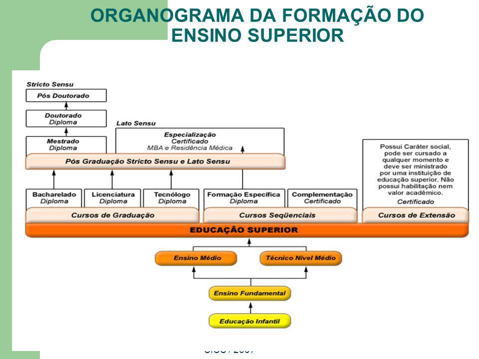 SICS / 2007 ORGANOGRAMA DA FORMAÇÃO DO ENSINO SUPERIOR