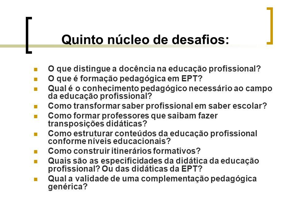 Quinto núcleo de desafios: O que distingue a docência na educação profissional? O que é formação pedagógica em EPT? Qual é o conhecimento pedagógico n