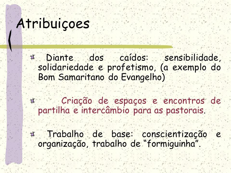 Atribuiçoes Diante dos caídos: sensibilidade, solidariedade e profetismo, (a exemplo do Bom Samaritano do Evangelho) Criação de espaços e encontros de