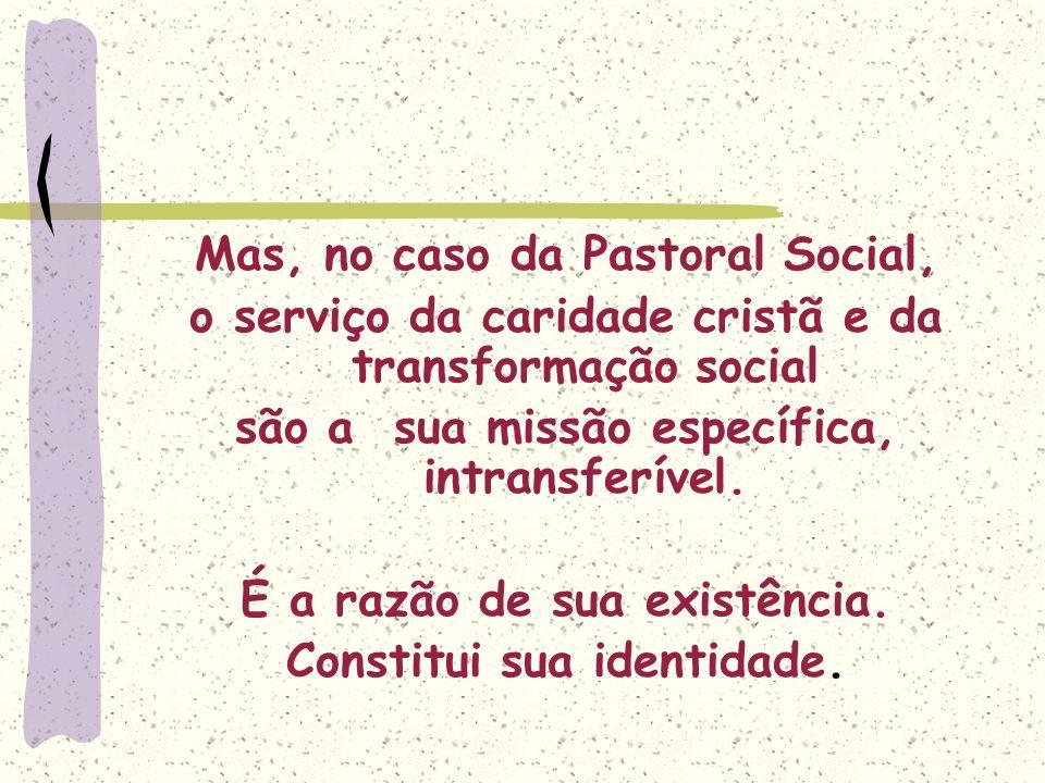 Mas, no caso da Pastoral Social, o serviço da caridade cristã e da transformação social são a sua missão específica, intransferível. É a razão de sua