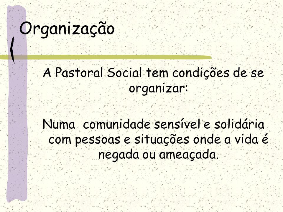 Organização A Pastoral Social tem condições de se organizar: Numa comunidade sensível e solidária com pessoas e situações onde a vida é negada ou amea