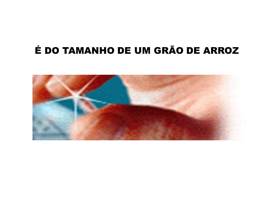 O Site www.sabetudo.net vai lhe Mostrar Agora!www.sabetudo.net A MAIS RECENTE NOVIDADE DESTE MUNDO...