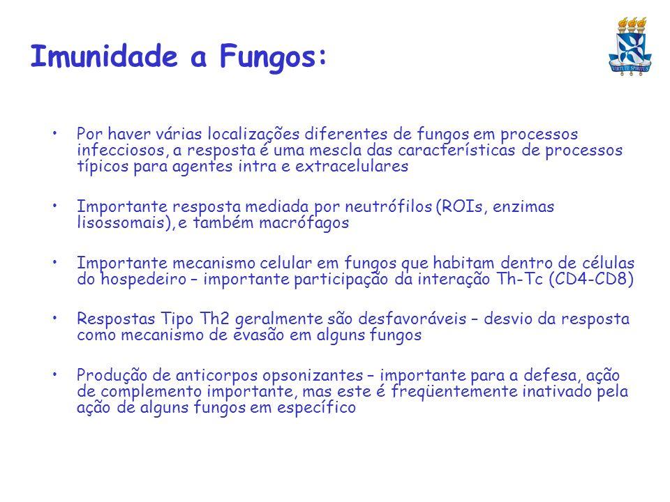 Imunidade a Fungos: Por haver várias localizações diferentes de fungos em processos infecciosos, a resposta é uma mescla das características de proces