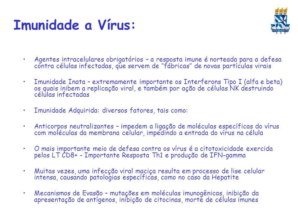 Imunidade a Vírus: Agentes intracelulares obrigatórios – a resposta imune é norteada para a defesa contra células infectadas, que servem de fábricas d