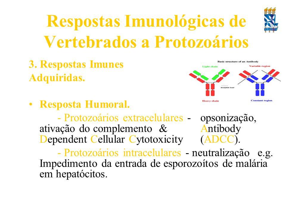 Respostas Imunológicas de Vertebrados a Protozoários 3. Respostas Imunes Adquiridas. Resposta Humoral. - Protozoários extracelulares - opsonização, at