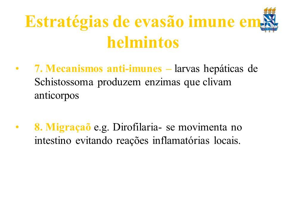 Estratégias de evasão imune em helmintos 7. Mecanismos anti-imunes – larvas hepáticas de Schistossoma produzem enzimas que clivam anticorpos 8. Migraç