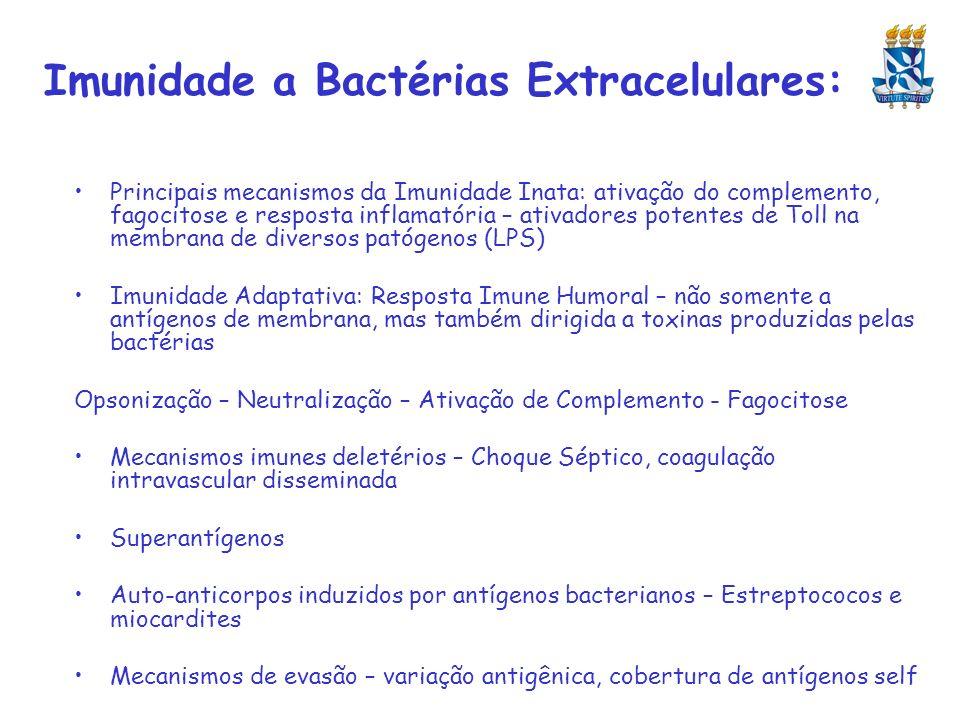 Imunidade a Bactérias Extracelulares: Principais mecanismos da Imunidade Inata: ativação do complemento, fagocitose e resposta inflamatória – ativador