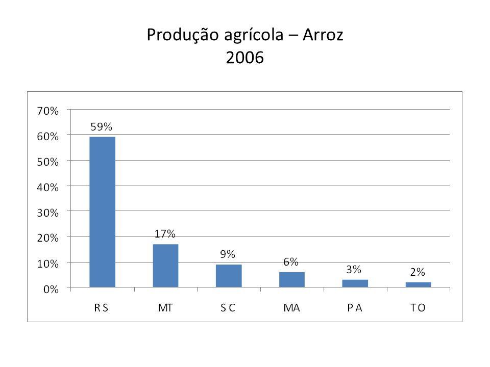 Produção agrícola – Arroz 2006