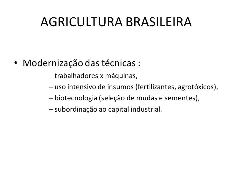 AGRICULTURA BRASILEIRA Modernização das técnicas : – trabalhadores x máquinas, – uso intensivo de insumos (fertilizantes, agrotóxicos), – biotecnologi
