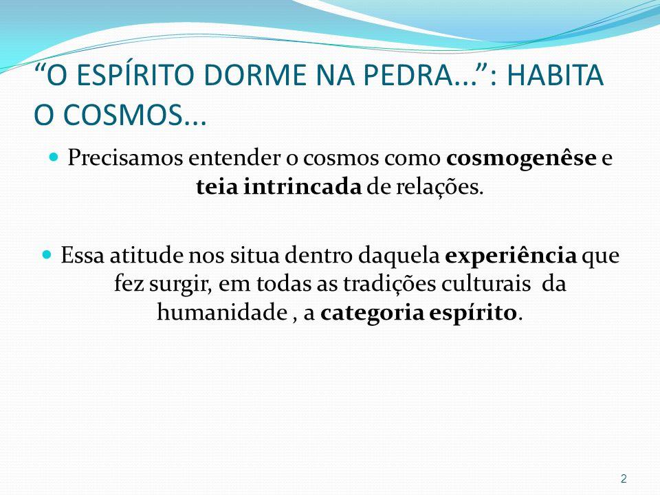 O ESPÍRITO DORME NA PEDRA...: HABITA O COSMOS... Precisamos entender o cosmos como cosmogenêse e teia intrincada de relações. Essa atitude nos situa d