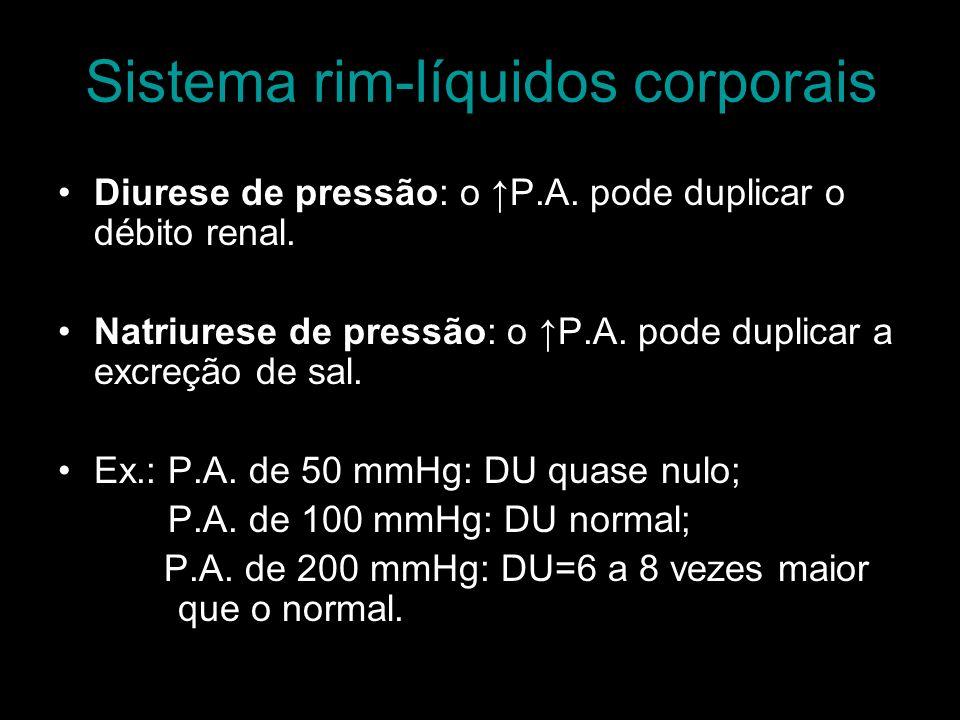 Sistema rim-líquidos corporais Diurese de pressão: o P.A. pode duplicar o débito renal. Natriurese de pressão: o P.A. pode duplicar a excreção de sal.