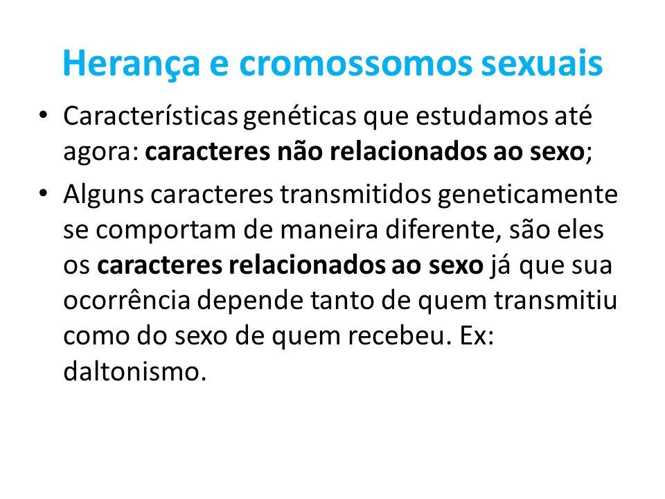 Herança e cromossomos sexuais Características genéticas que estudamos até agora: caracteres não relacionados ao sexo; Alguns caracteres transmitidos g