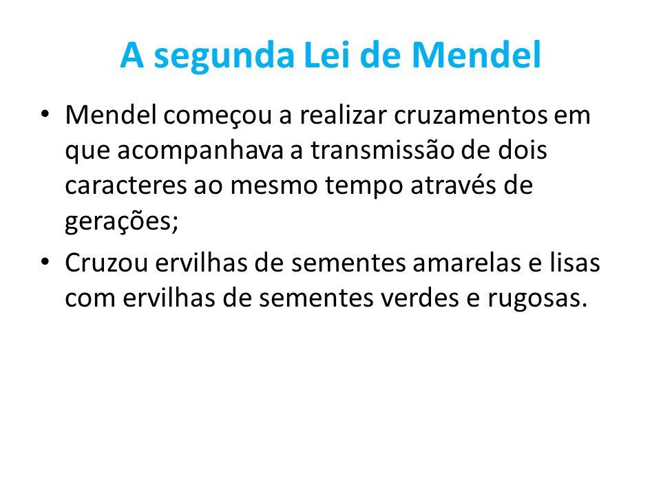 A segunda Lei de Mendel Mendel começou a realizar cruzamentos em que acompanhava a transmissão de dois caracteres ao mesmo tempo através de gerações;